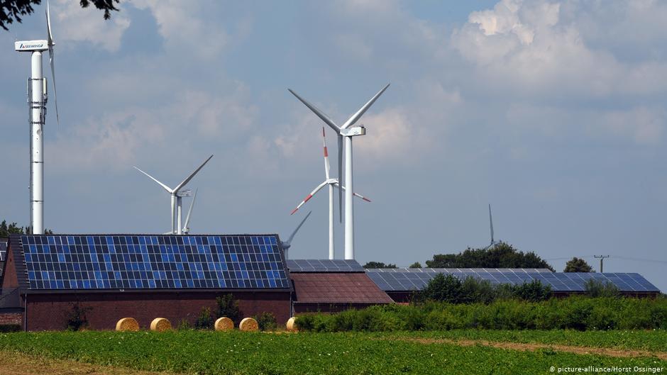 Пионерская система ветряных электростанций для защиты птиц в Южной Африке