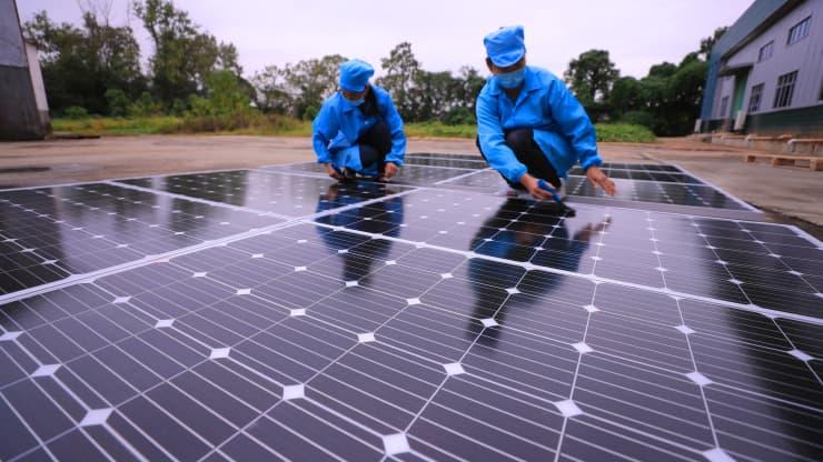 К 2050 году возобновляемые источники энергии могут заменить ископаемое топливо